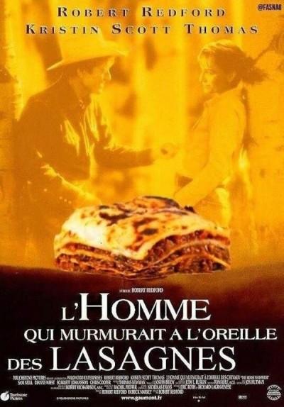 lasagnes-au-cheval-findus-humour