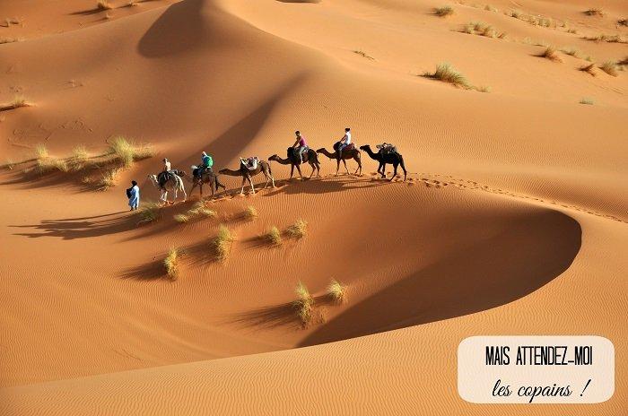 lookea-tunisie-desert