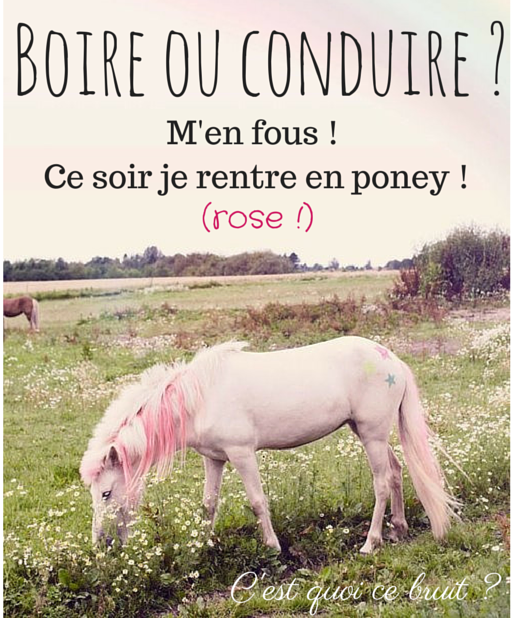 Je rentre en poney rose !