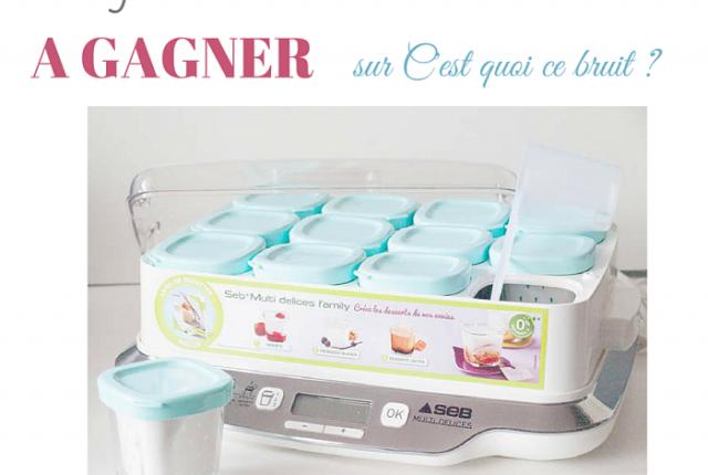 yaourtière Multi Délices de SEB