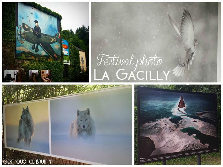 Festival photo de la Gacilly (Morbihan) en 2015