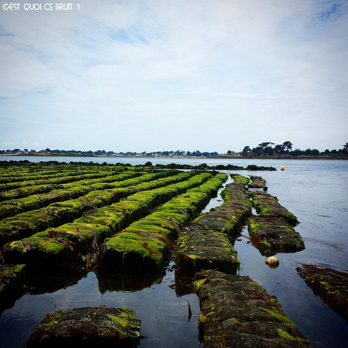 Promenade dans le Morbihan
