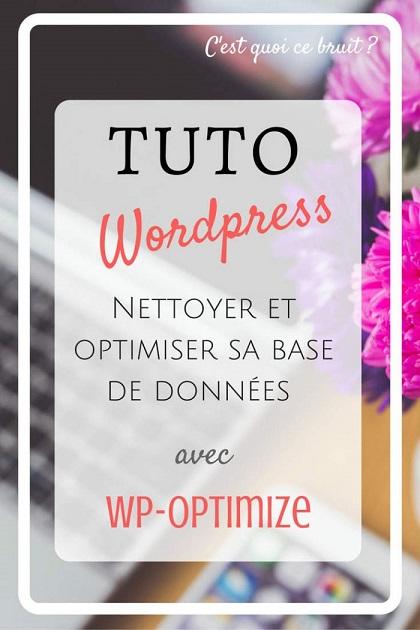 Blog : optimiser sa base de données wordpress
