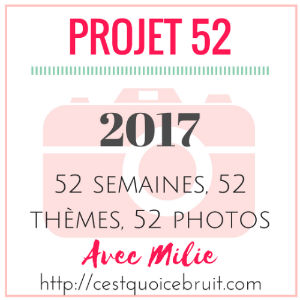 Projet 52 logo 2017