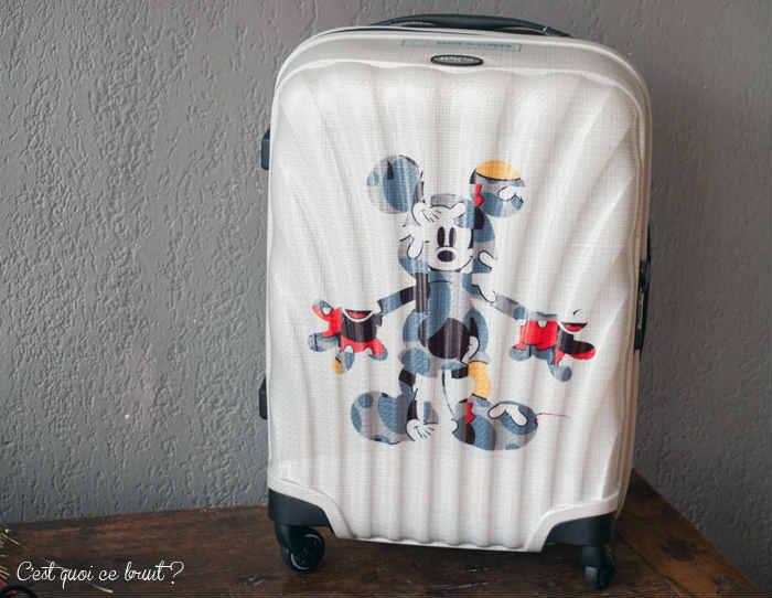 voyage en avion je mets quoi dans mon bagage cabine. Black Bedroom Furniture Sets. Home Design Ideas