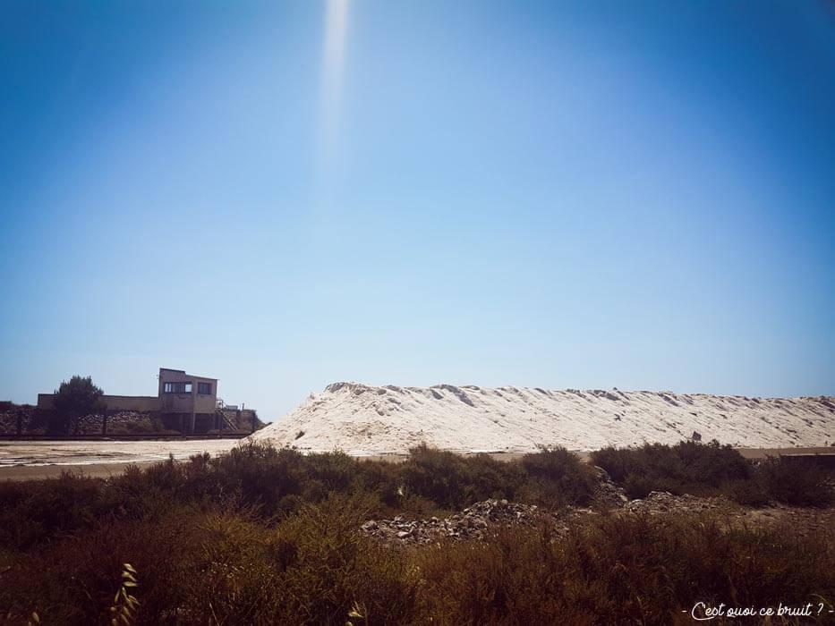 Visite de l'Aude : les salins de Gruissan