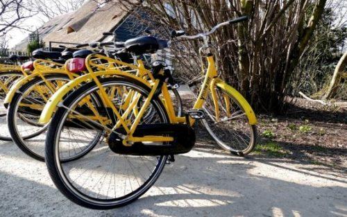 Amsterdam, se promener en famille en vélo