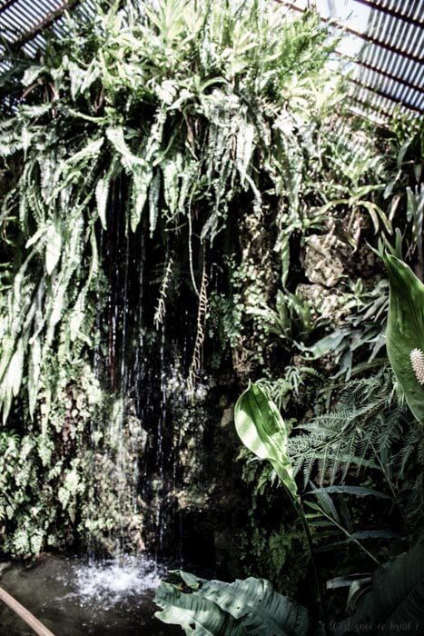 bambouseraie-anduze-familytrip-37