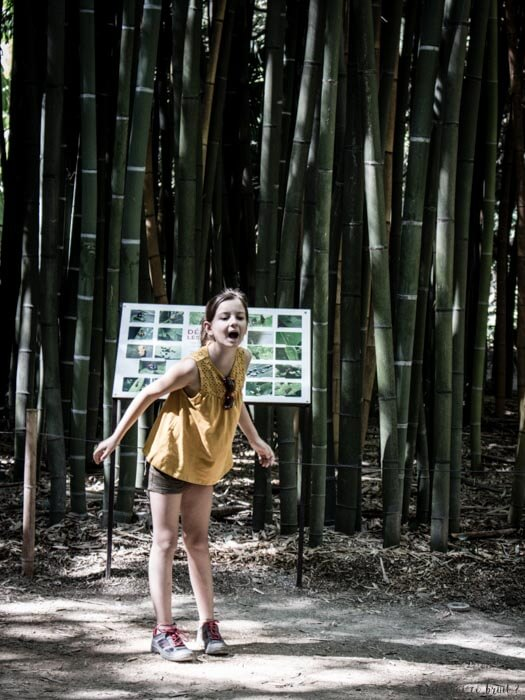 bambouseraie-anduze-familytrip-5