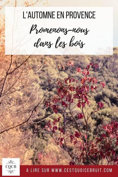 Promenade automnale en famille à Méounes, Var, Provence Verte #Var #Provence #ProvenceVerte #automne #autumn #famille