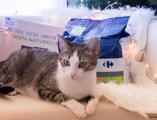 Mes chats ont une litière végétale écologique et recyclable