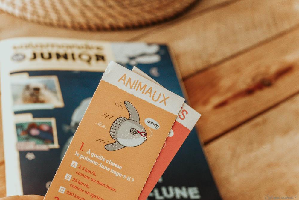 Parents, choisir un magazine jeunesse pour son enfant : ma fille lit Salamandre Junior